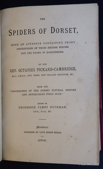 Image for The Spiders of Dorset. With an appendix containing short descriptions of those British species not yet found in Dorsetshire