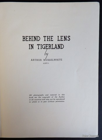Image for Behind the Lens in Tigerland