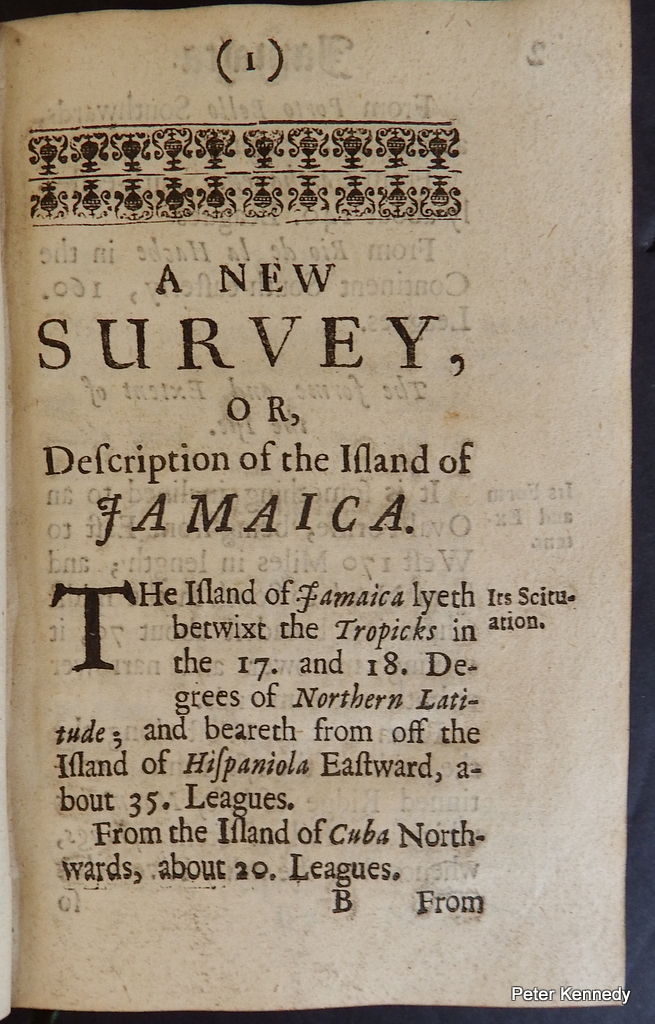 Image for (Virginia, Maryland New York etc)  A Description of the Island of Jamaica With the other Isles and Territories in America to which the English are related...