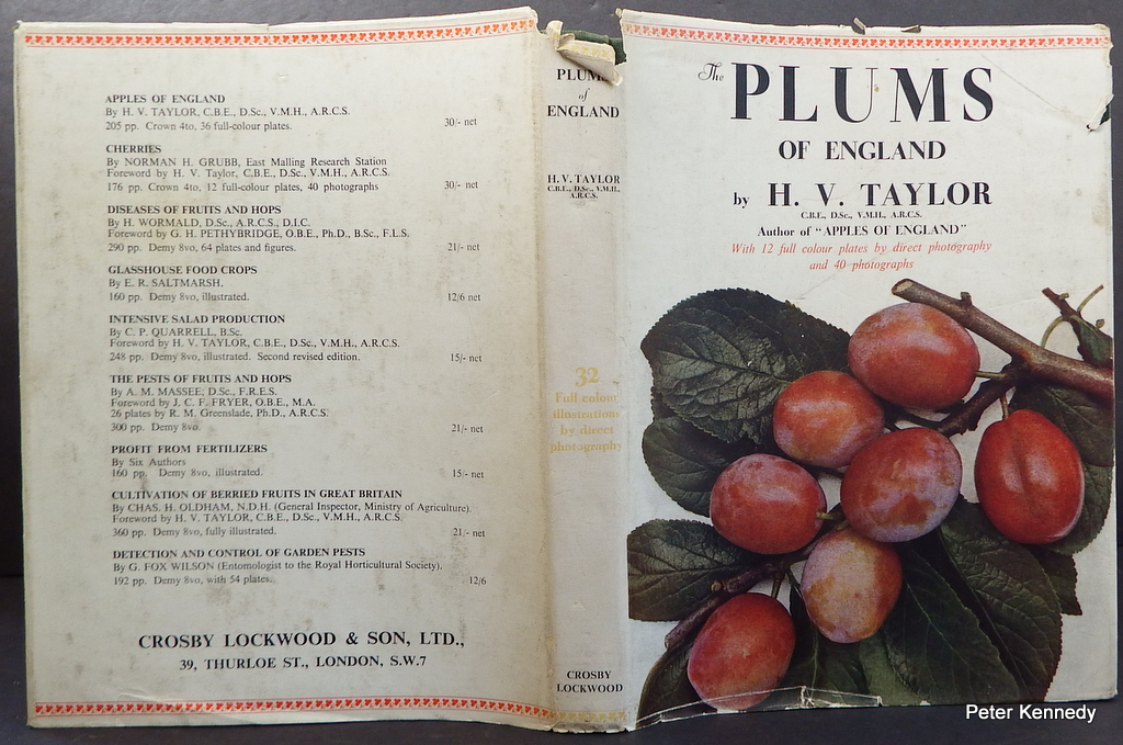 Image for The Plums of England